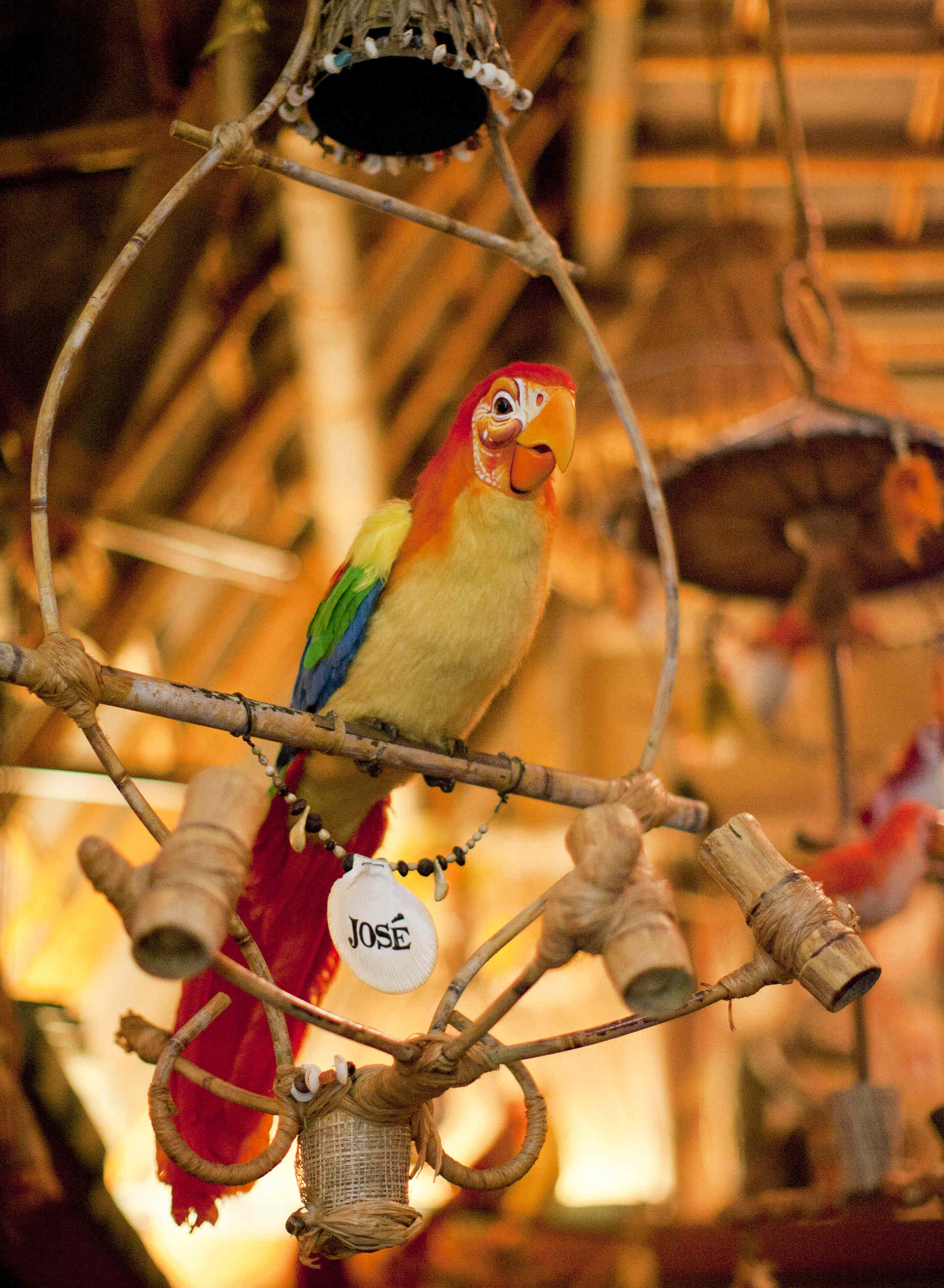 walt disney s enchanted tiki room celebrates more than 55 years rh disneylandnews com Room Tiki Adventureland Gigicockatoo Tiki Room Pierre