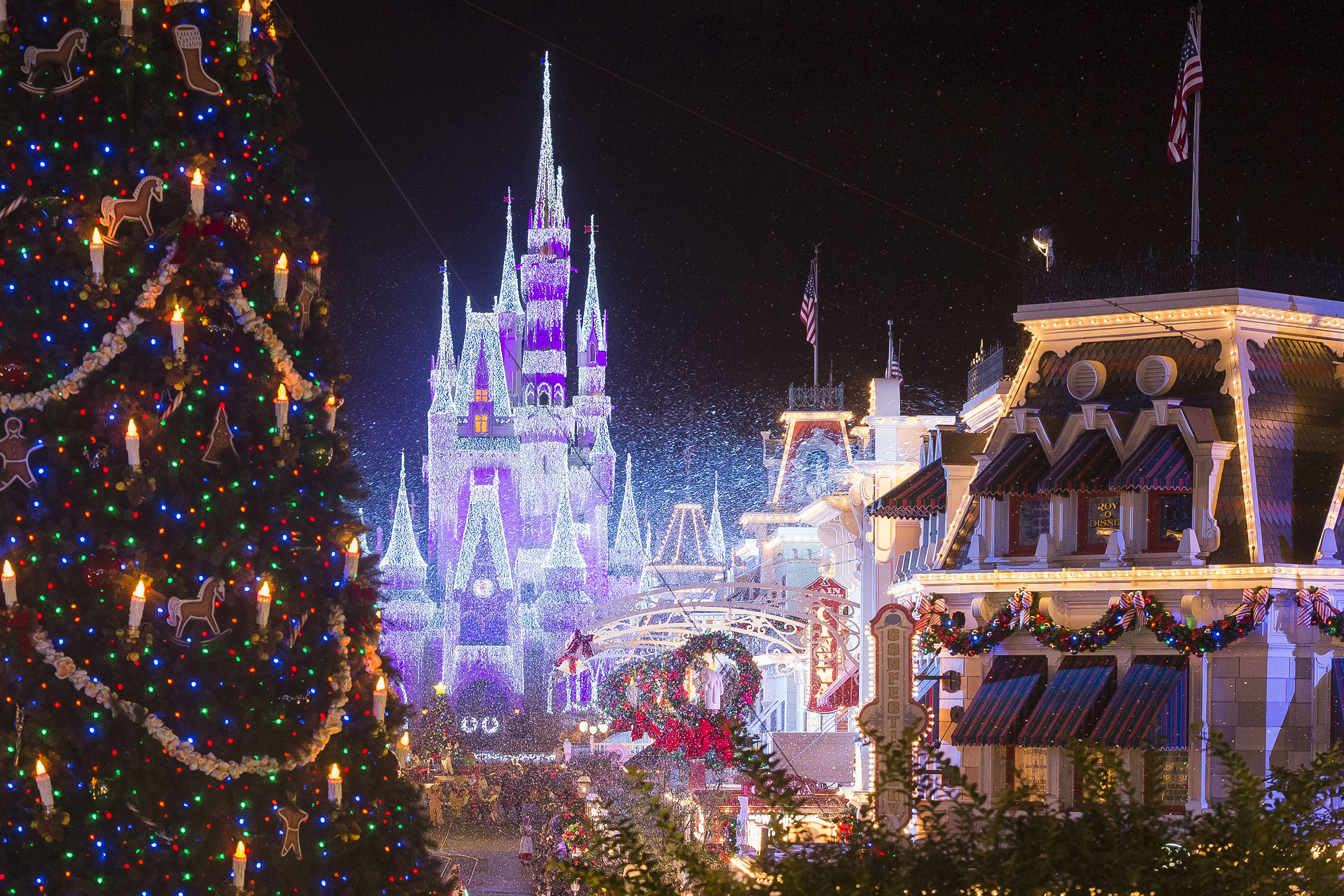ABC and Disney Channel Bring the Magic of Disney Parks to