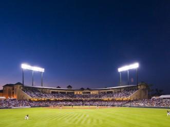 Champion Stadium - Sunset landscape